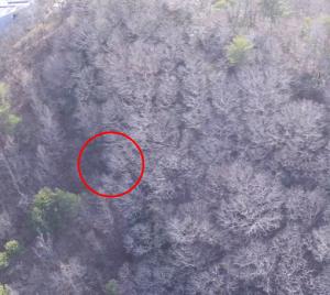 ACSL、兵庫県で実施されたLevel3飛行による鳥獣害調査に国産ドローンを提供
